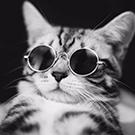 Cristian_Sergheevich